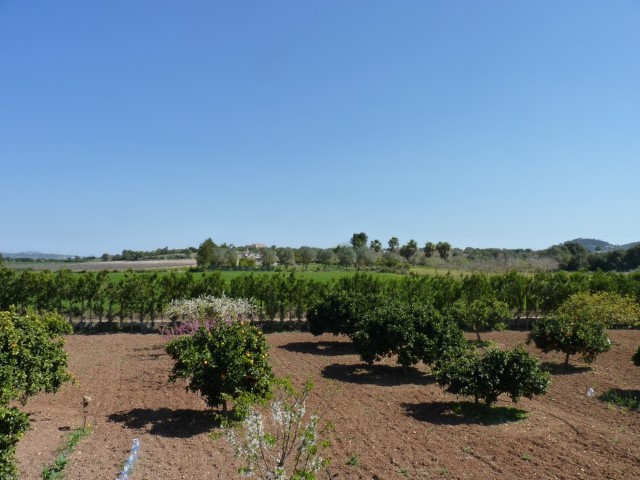Rustic property with swimming pool and garden for sale outside Manacor