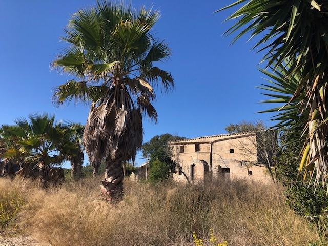 Renvation properties for sale in Mallorca