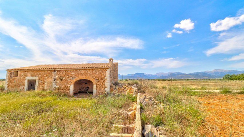 Large country plot for sale in Binissalem, Mallorca