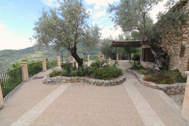 Beautiful olive grove on a very large plot for sale in Soller